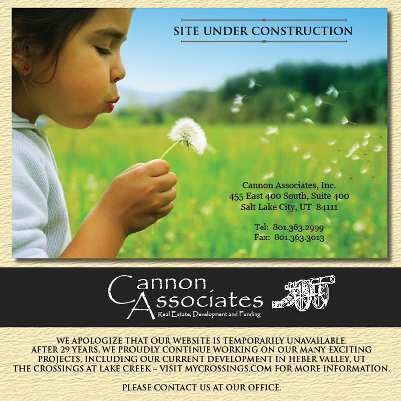Cannon Associates Temporary Home Page